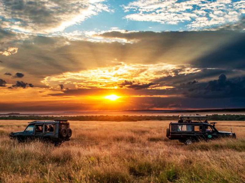 safari accessibili
