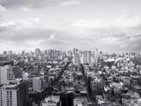 viaggio per disabili a new york