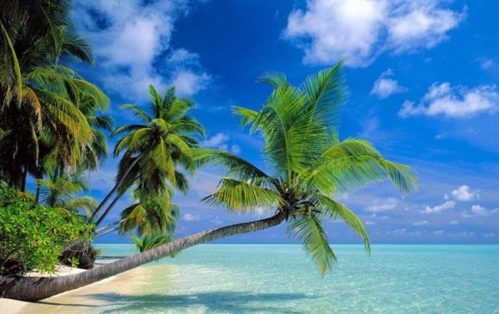 resort accessibile alle maldive in carrozzina